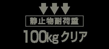 静止物耐荷重 100kgクリア